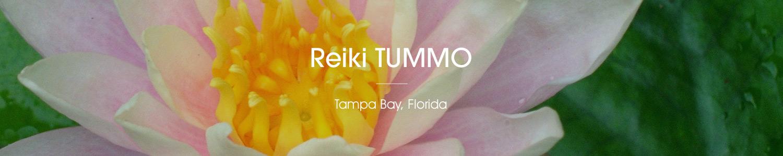 Reiki TUMMO Tampa Bay